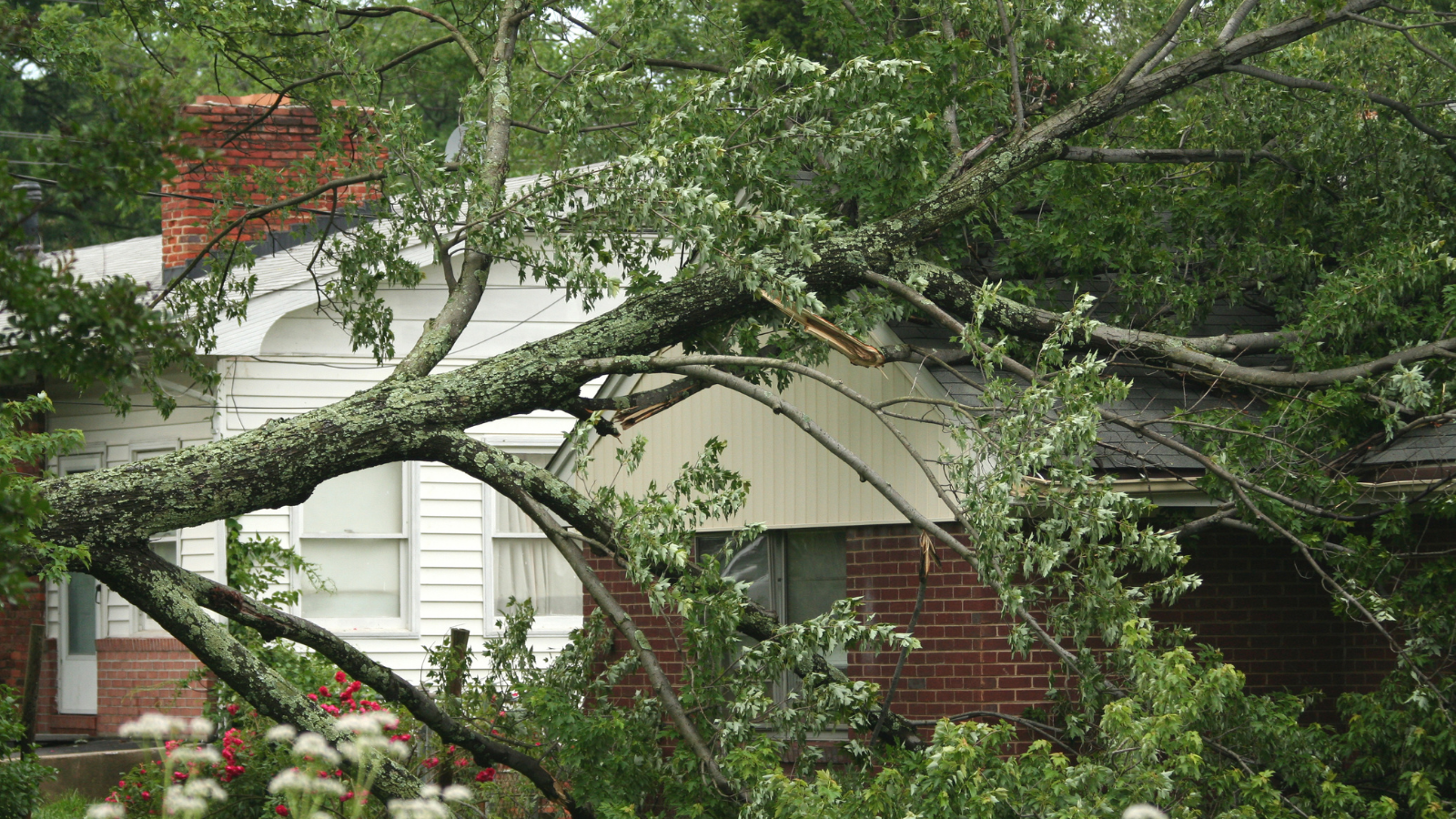 How to Prevent Roof Damage From Storms